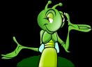 חברת דקל הדברות מומחים להדברה ירוקה נגד מכרסמים