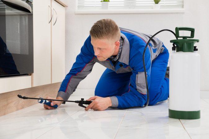 שיטות ריסוס משולב נגד מזיקים בתוך הבית